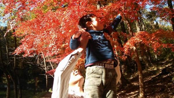 野山北公園の紅葉