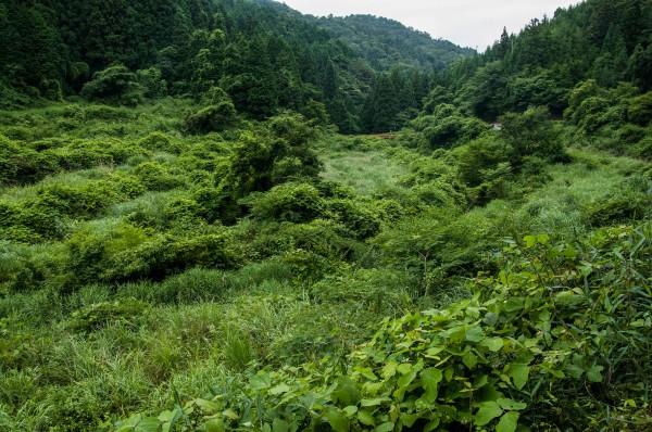 六呂師 滝ノ下