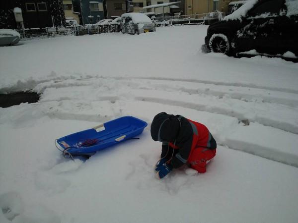 所沢 大雪