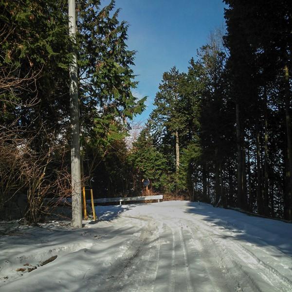 奥武蔵グリーンライン 雪道