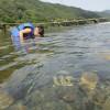錦川 水遊び