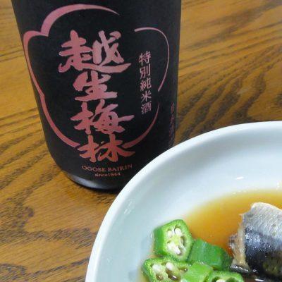 越生梅林 特別純米酒