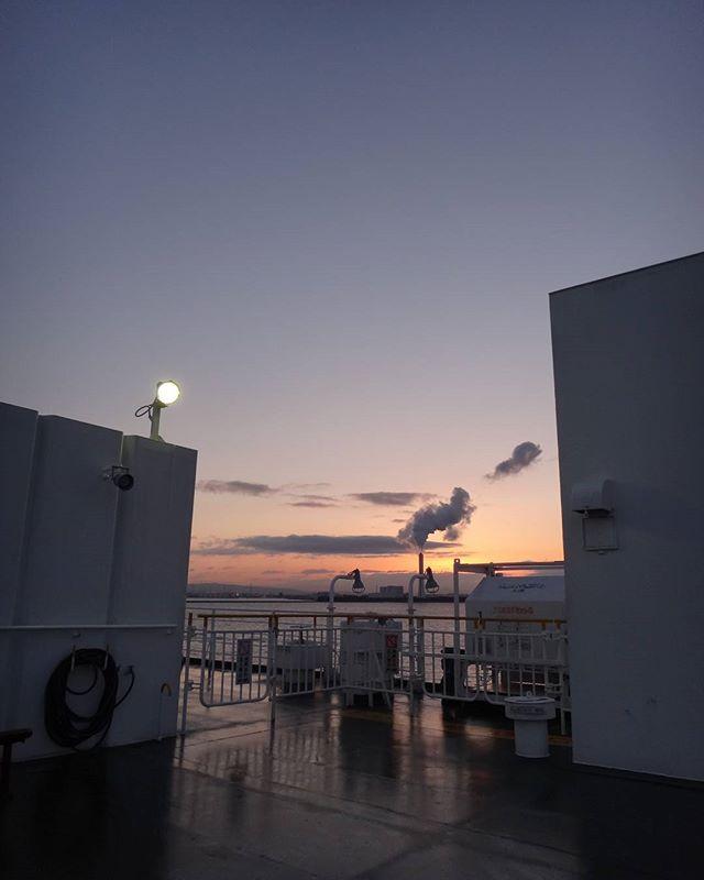 大阪到着#さんふらわあ #さんふらわあこばると #船旅 #フェリーの旅 #出張中