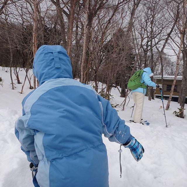 ウチの奥さん、スノーシュー初挑戦!#赤城山 #スノーシュー #雪あそび #雪山
