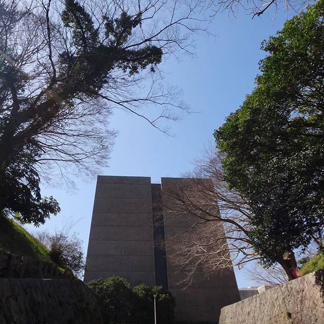 今日は帰ります。宿はキャンセル。明後日また来ます。#国立歴史民俗博物館 #歴博 #佐倉城址公園 #佐倉 #千葉県 #佐倉出張