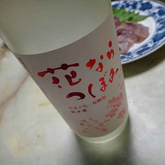 甘くて、香りも良くて、アルコール度数5.5%、ジュースのようだ。#花ならつぼみ #五橋 #低アルコール日本酒 #日本酒 #岩国の酒 #山口の酒