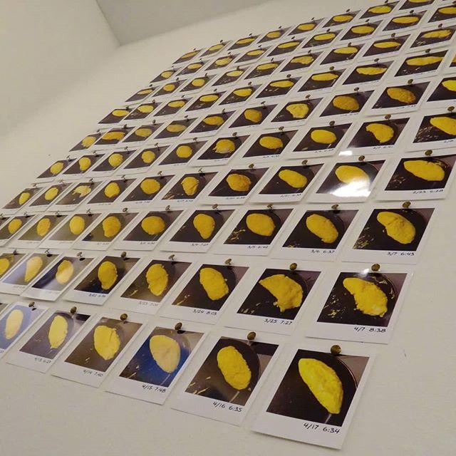 作品搬入完了。4月19日~24日、国立アートイマジンギャラリーにて。#オムレツの乱れは心の乱れ #作品 #作品展 #展覧会 #ポラロイド風 #アート #アートイマジン #アートイマジンギャラリー