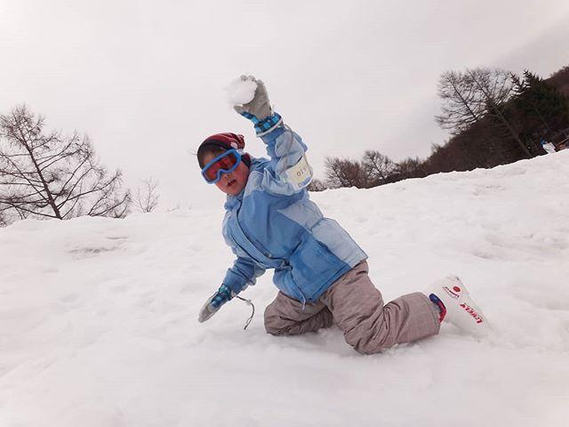 スキーより雪合戦#雪合戦 #息子とスキー #軽井沢スノーパーク #スキー #親子でスキー