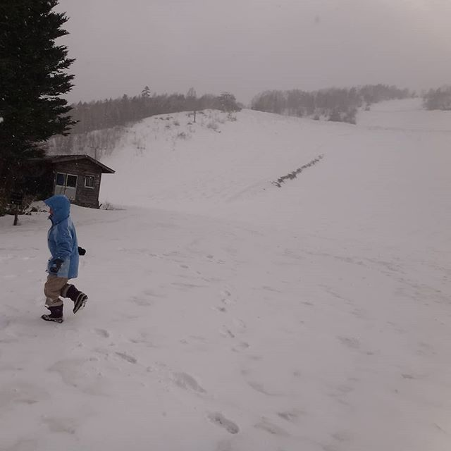 乗鞍高原は吹雪!__#乗鞍高原 #ゴールデンウイーク #吹雪 #雪あそび #雪合戦