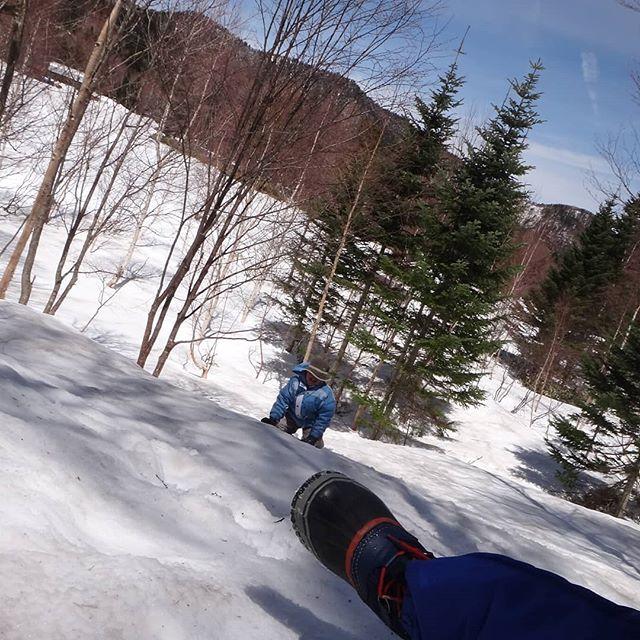 木の枝と雪玉でサバゲー状態。昨日の吹雪から一転、本日は快晴!__#乗鞍高原でも雪合戦 #乗鞍高原 #三本滝 #雪合戦 #雪あそび #息子と二人旅 #スノーキャンプ