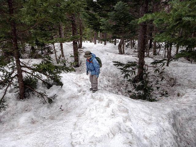 スキー特訓の後は付近の森を探検。道なき道を進むのだ!__#スノーハイク #乗鞍高原 #ハイキング #三本滝 #雪遊び
