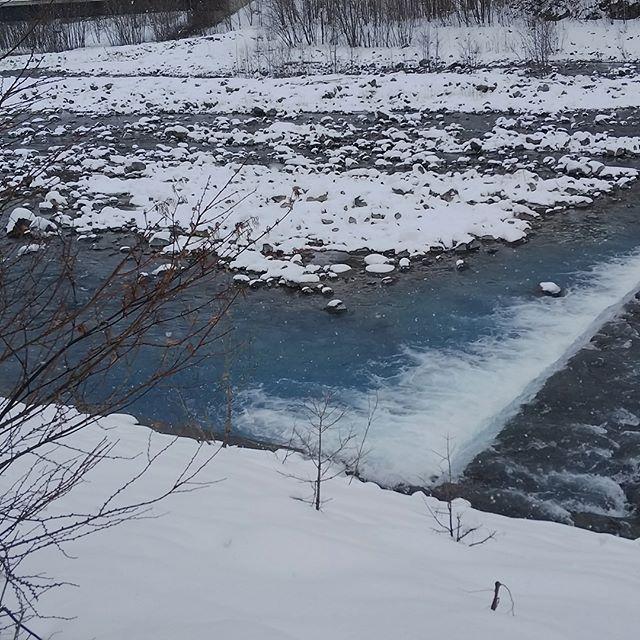 池は白かったけど川は青かった#青い川 #青い池が白い池 #青い池 #美瑛
