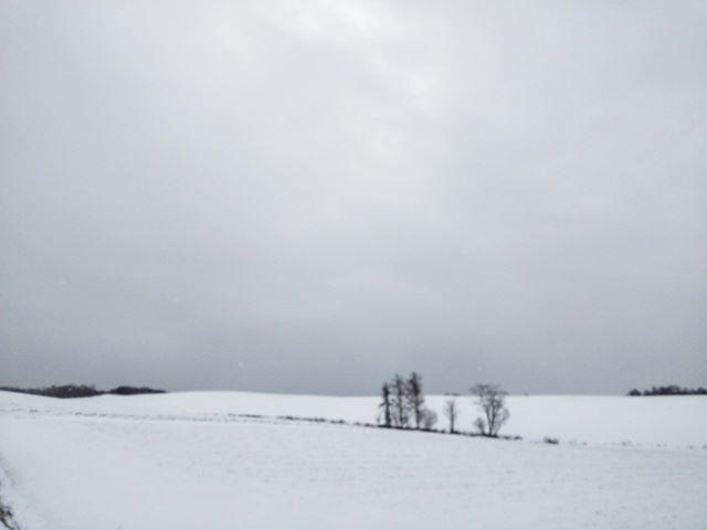 写真じゃ伝わらない#美瑛 #雪景色