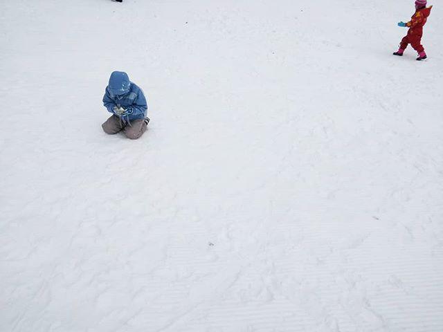 泣くほど行きたかったのにわずか1時間で戦意喪失#たんばらスキーパーク #たんばらスキー場 #玉原 #雪遊び