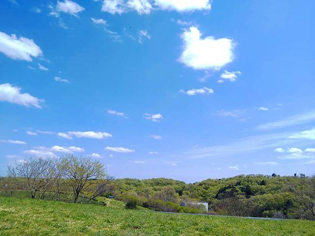 所沢とは思えない景色#比良の丘 #新緑 #新型コロナウイルスの影響で #狭山湖 #所沢の風景